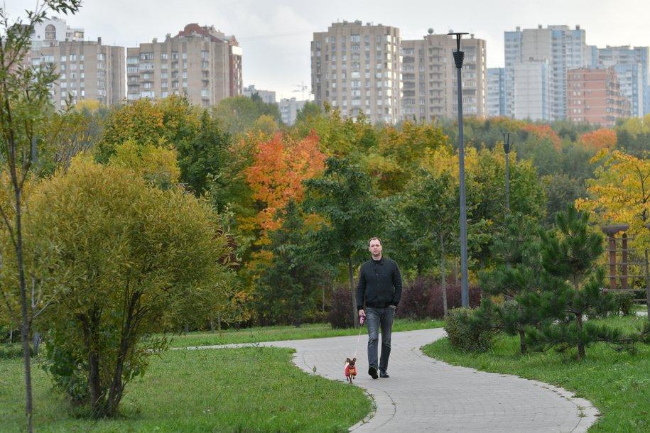 В пойме реки Битца завершилось благоустройство нового парка