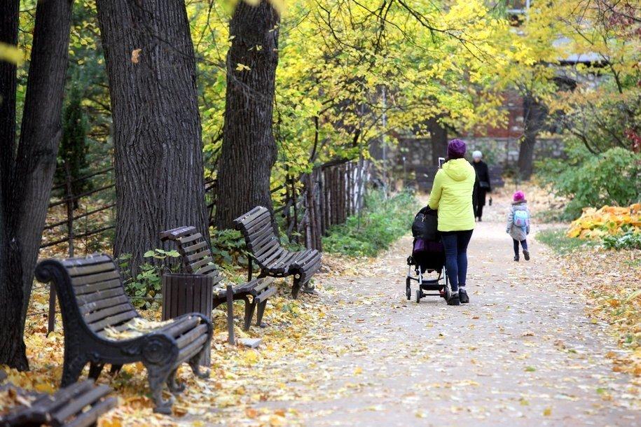 МЧС предупредило москвичей о порывах ветра до 12 м/с днем 4 ноября