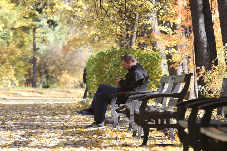 Прошедшая осень в Москве вошла в пятерку самых теплых в истории метеонаблюдений
