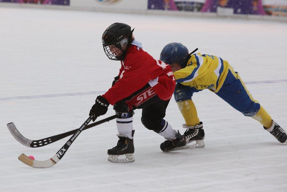 Пожаловаться на плохо залитую хоккейную площадку можно на портале «Наш город»