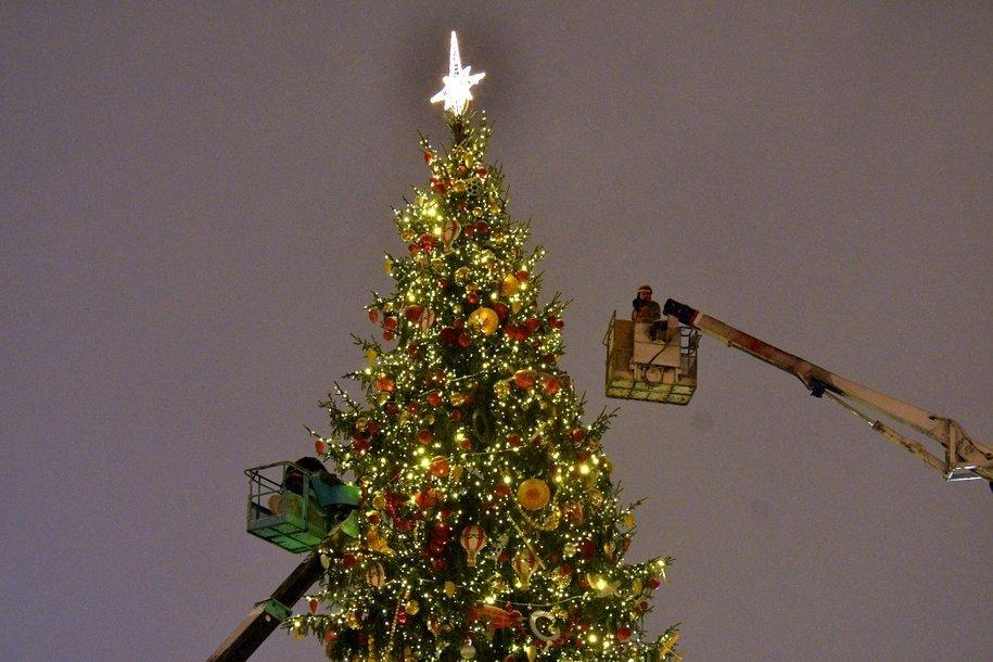 На Северо-Востоке Москвы установят более 100 новогодний елей до 15 декабря