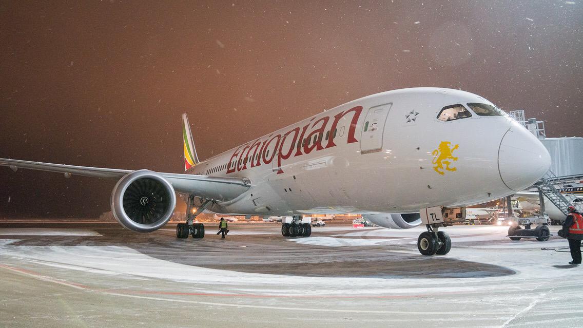 Первый регулярный рейс из Аддис-Абебы приземлился в аэропорту Домодедово