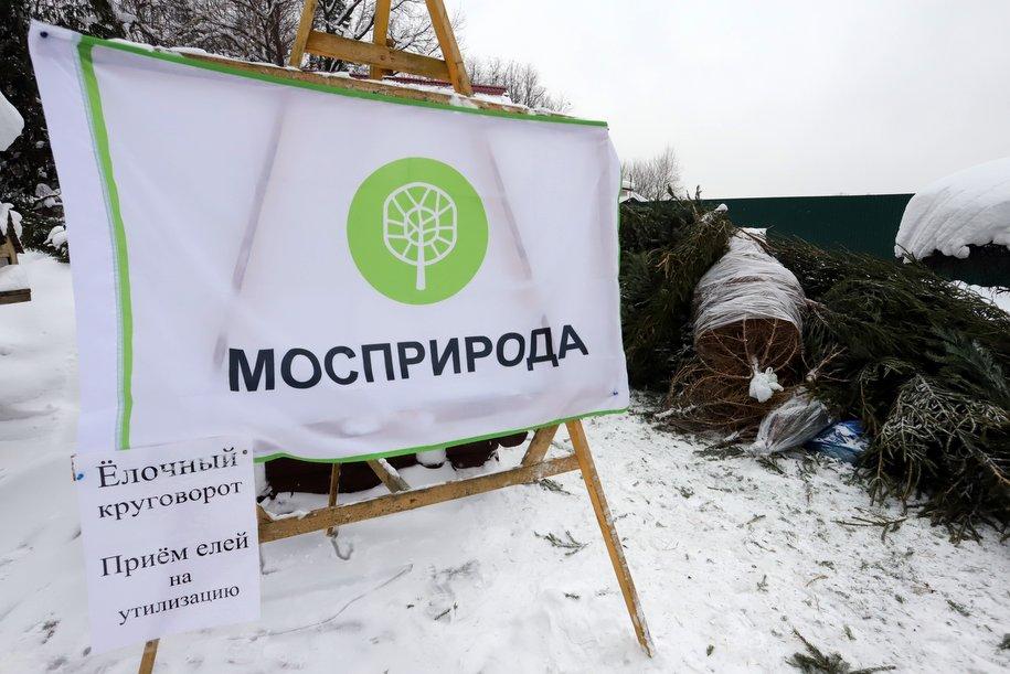 Акция «Ёлочный круговорот» продлится в столице до 1 марта