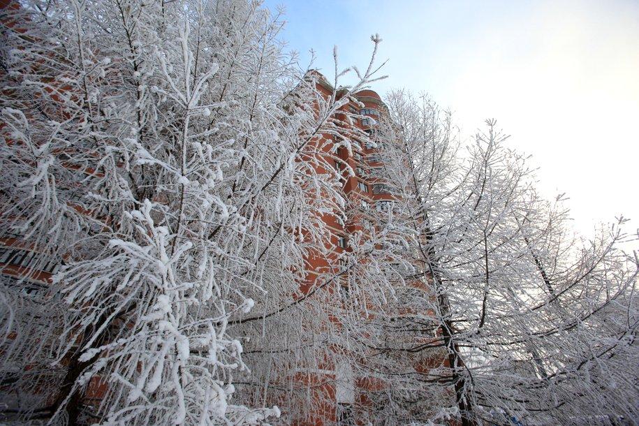 Крещенские морозы продержатся в Москве до конца недели