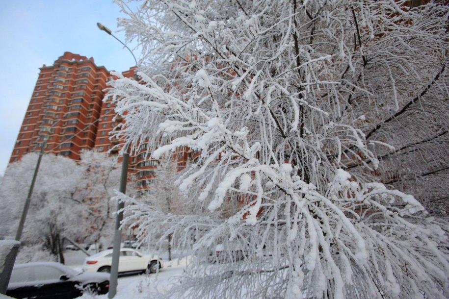 Cистемы жизнеобеспечения Москвы в рождественские морозы работают штатно