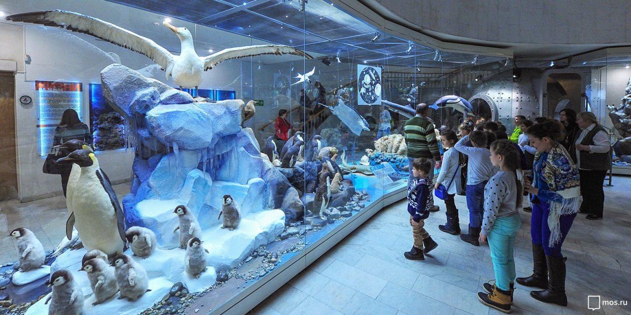 В Дарвиновском музее откроется выставка о приручении человеком диких животных