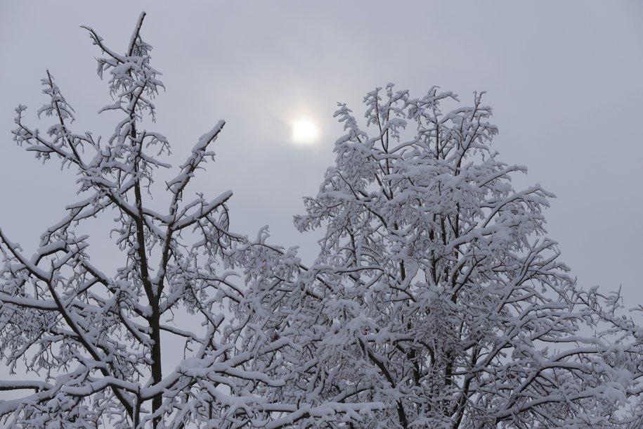 Четверг в Москве станет самым холодным днем этой недели