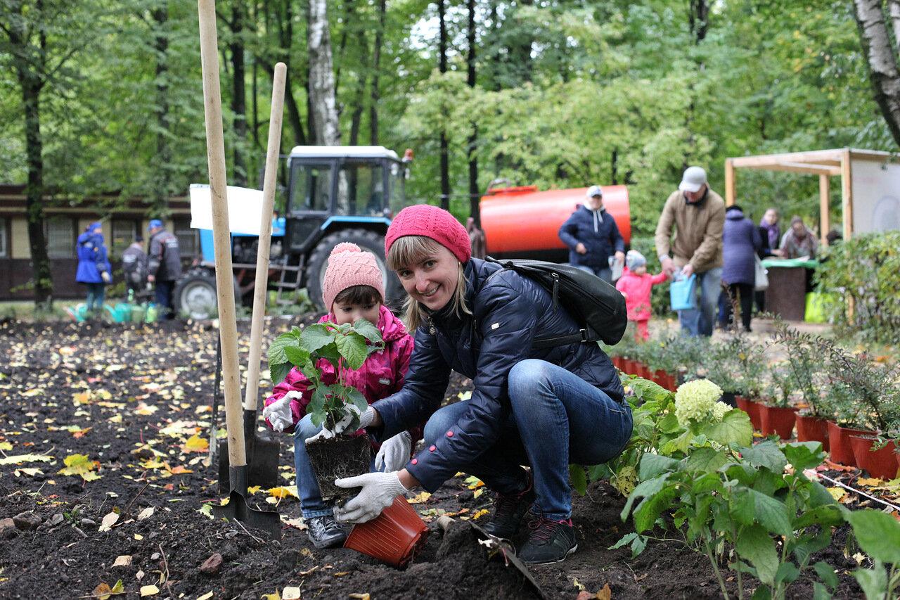 Весенний этап акции «Миллион деревьев» начнется в Ясенево