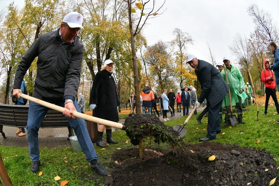 Масштабная программа озеленения стартует в столице