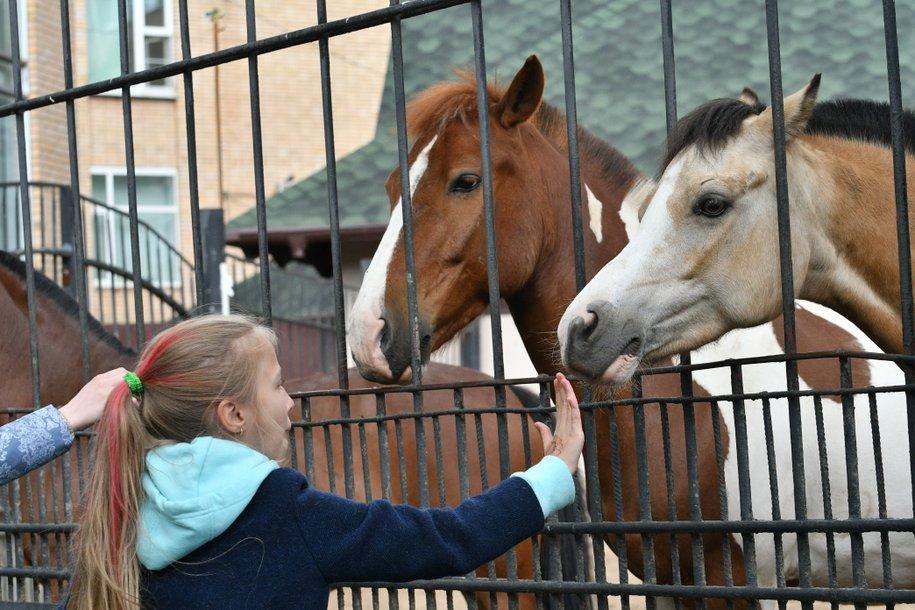 Московский зоопарк призвал не ставить детей на край вольеров