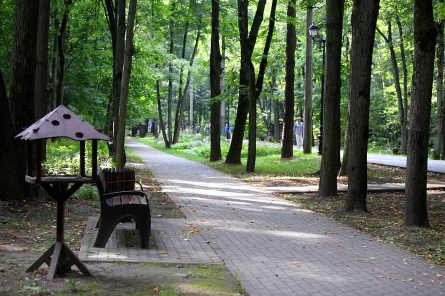 В столичных парках пройдут соревнования по скандинавской ходьбе