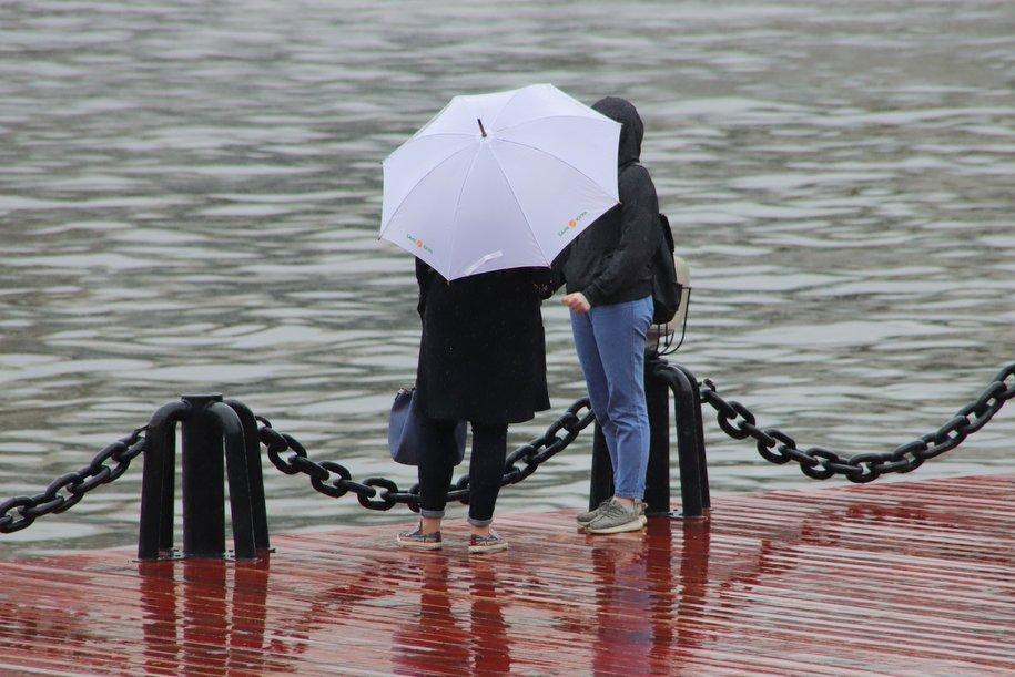 МЧС предупредило москвичей о ветре с порывами до 19 м/с до конца дня