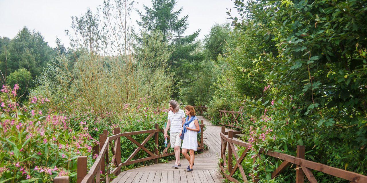 Смотровые площадки в пойме реки Яузы свяжет экотропа