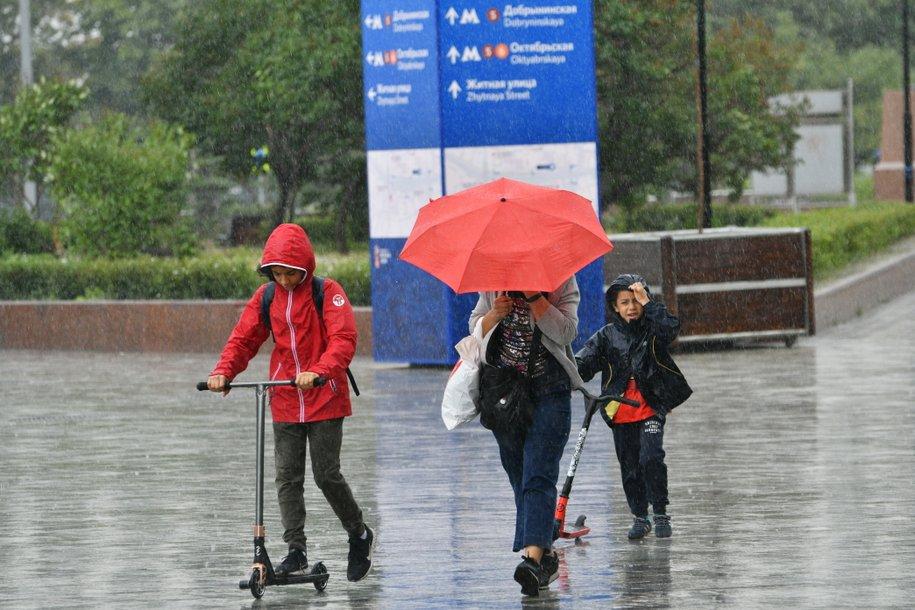 МЧС предупредило москвичей о грозе и усилении ветра до 15 м/с в ближайшие часы