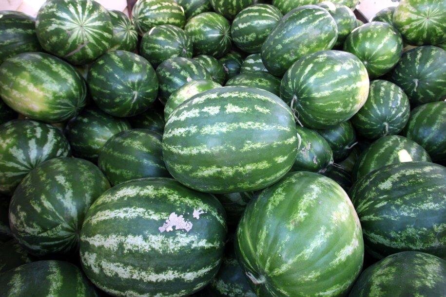 Сезон продажи арбузов и дынь открылся в Москве