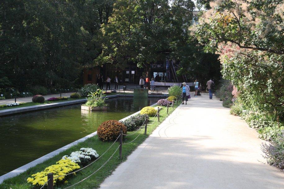 Из Ботанического сада МГУ украли сахалинскую пихту