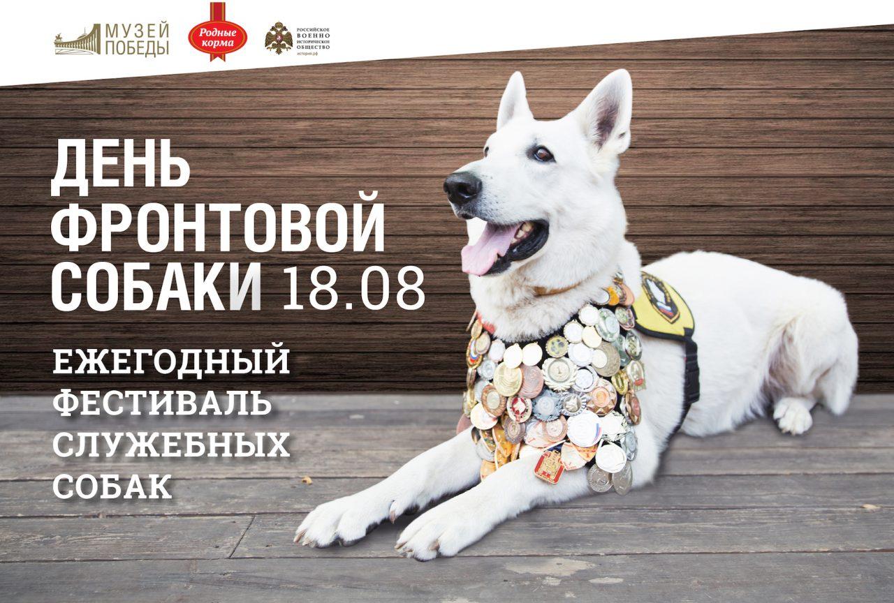 День фронтовой собаки отпразднуют в Музее Победы