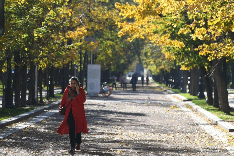 В предстоящие выходные москвичей ожидает тёплая погода