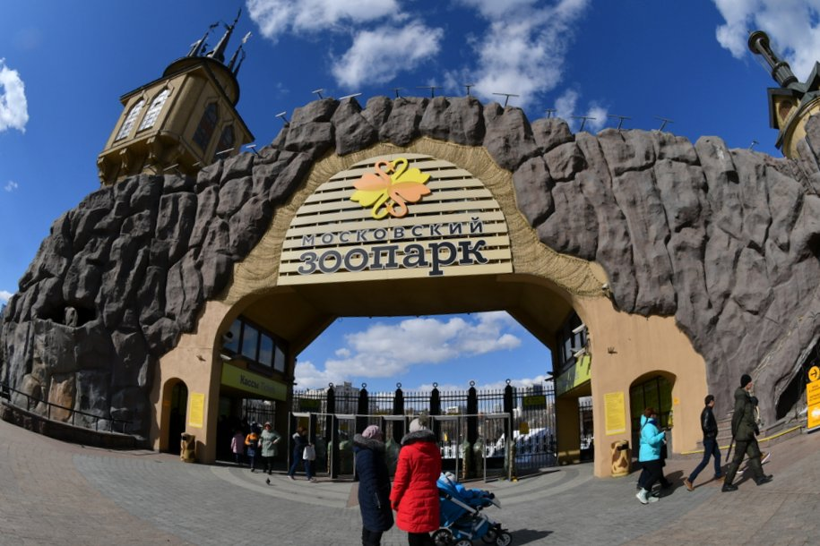 Акцию «Осенний урожай» проведут в Московском зоопарке
