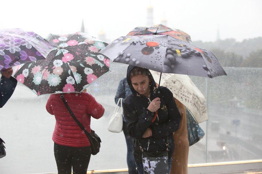 МЧС предупредило москвичей о мокром снеге, дожде и сильном ветре до вечера воскресенья