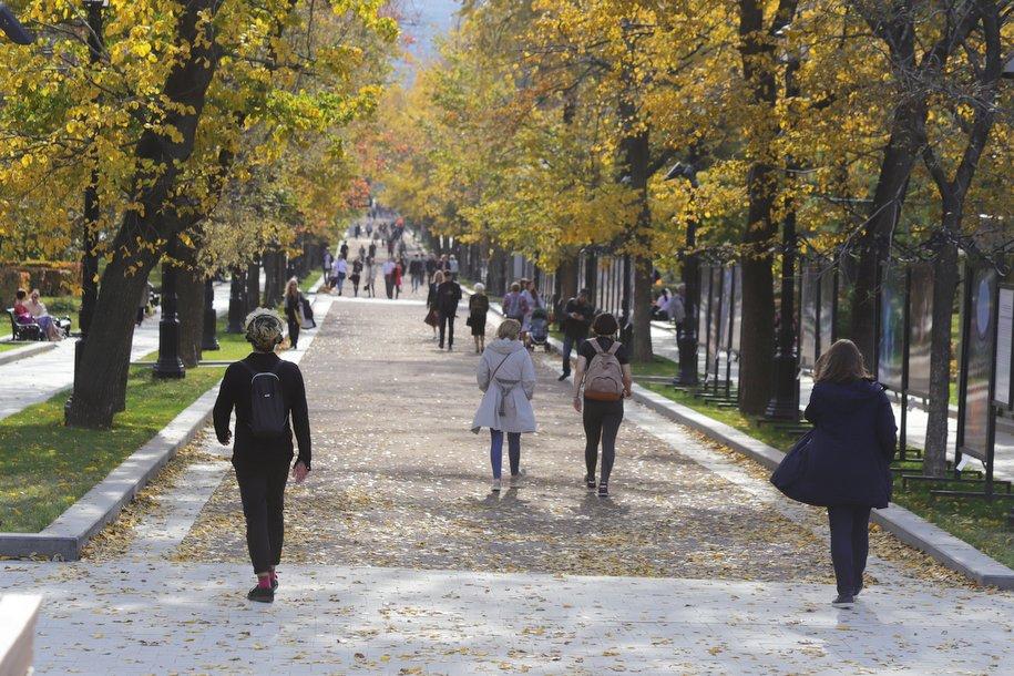 В Москве благоустроили сквер после обращений жителей на портал «Наш город»
