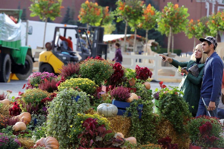 Продукты со скидкой до 50% могут купить гости фестиваля «Золотая осень» в Москве 12-13 октября