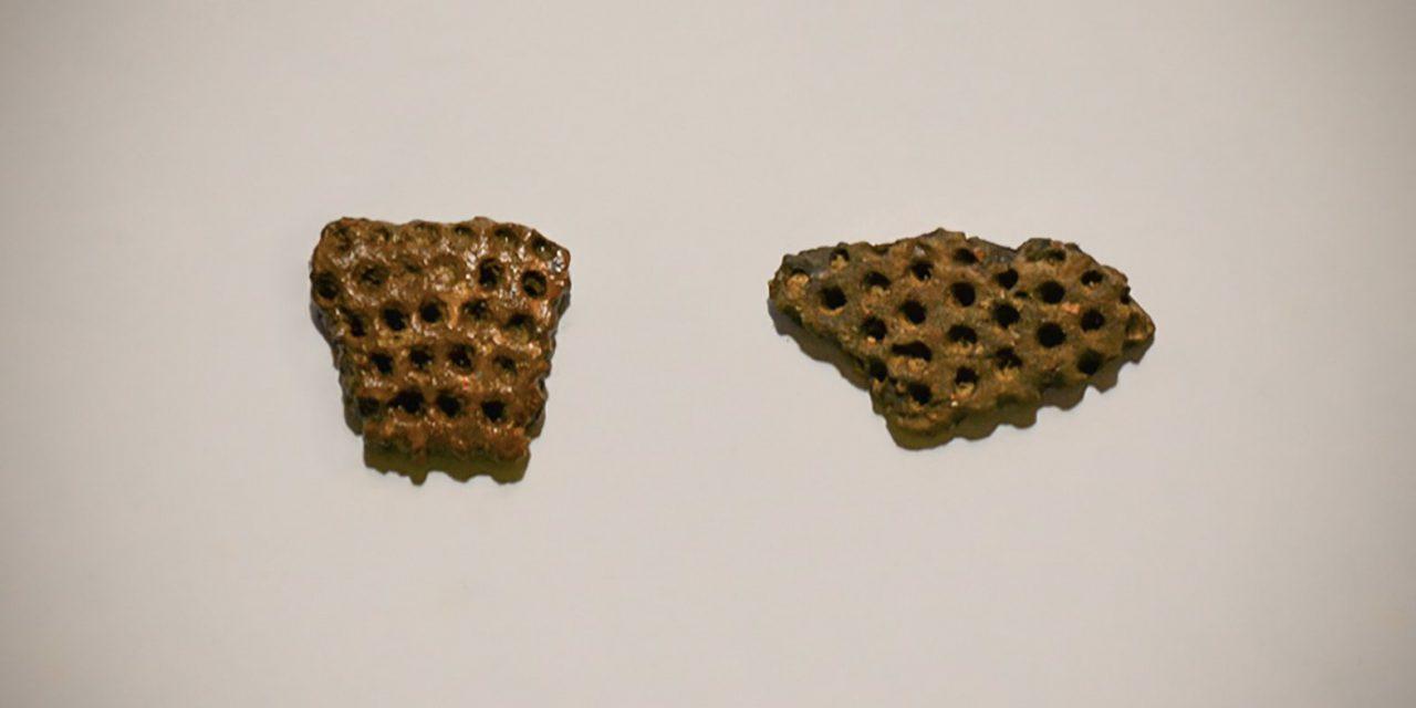 Рядом с Гоголевским бульваром нашли фрагменты древнего сосуда