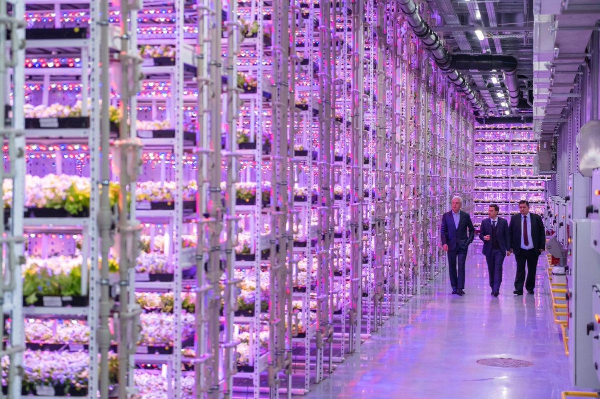 В столице открылся уникальный агрокомплекс «РусЭко»