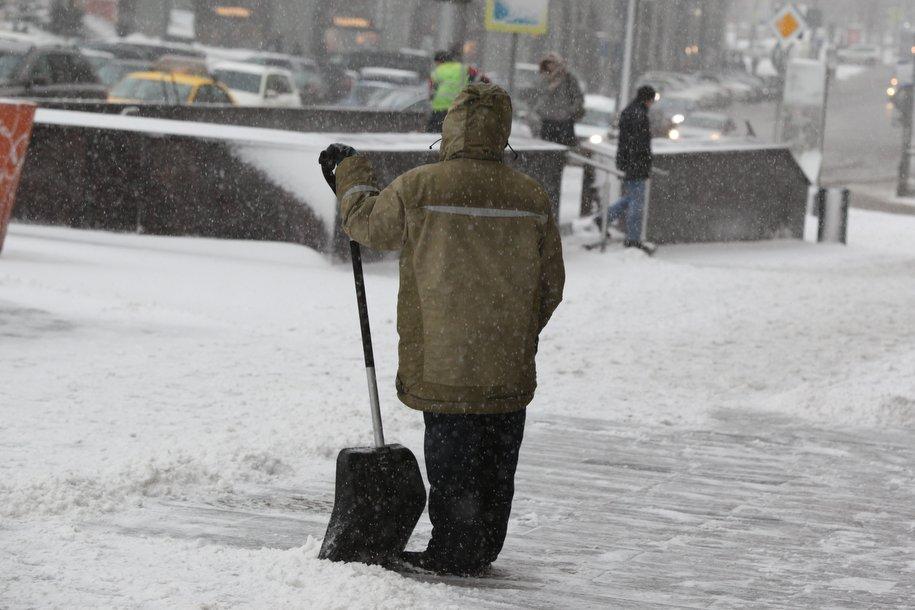 Прошедшая ночь в Москве стала самой холодной с начала осени