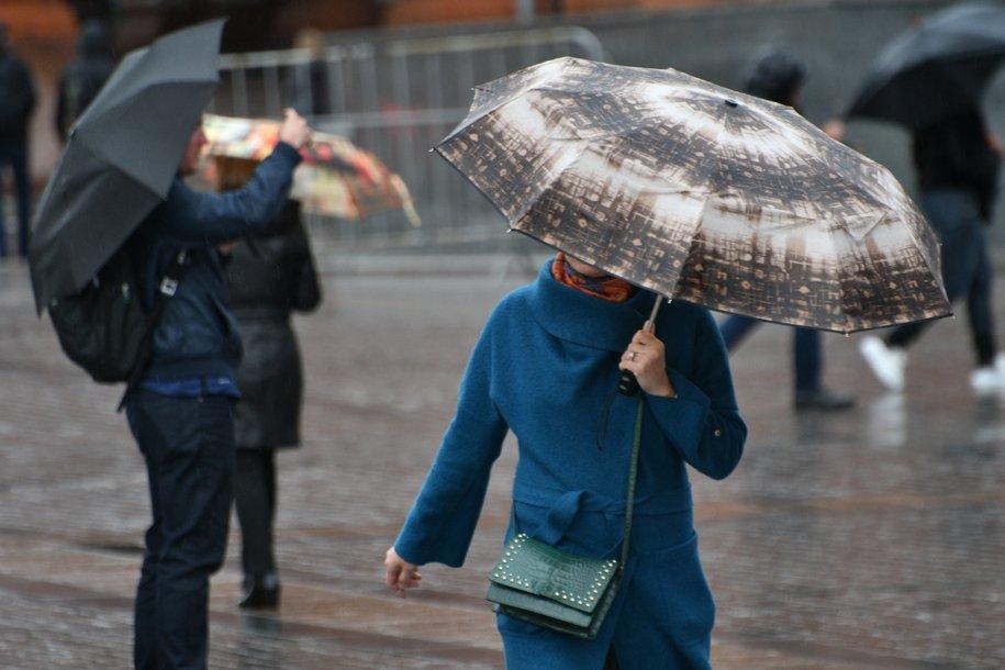Последний день ноября будет дождливым