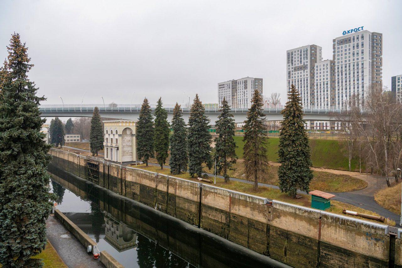 Более 5,5 тысяч деревьев и кустарников высажено в рамках благоустройства уникального балочного моста
