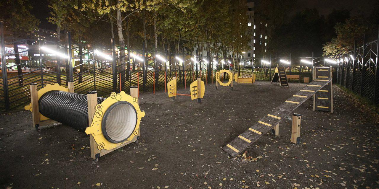 В московских парках и скверах появились 22 новые площадки для выгула собак