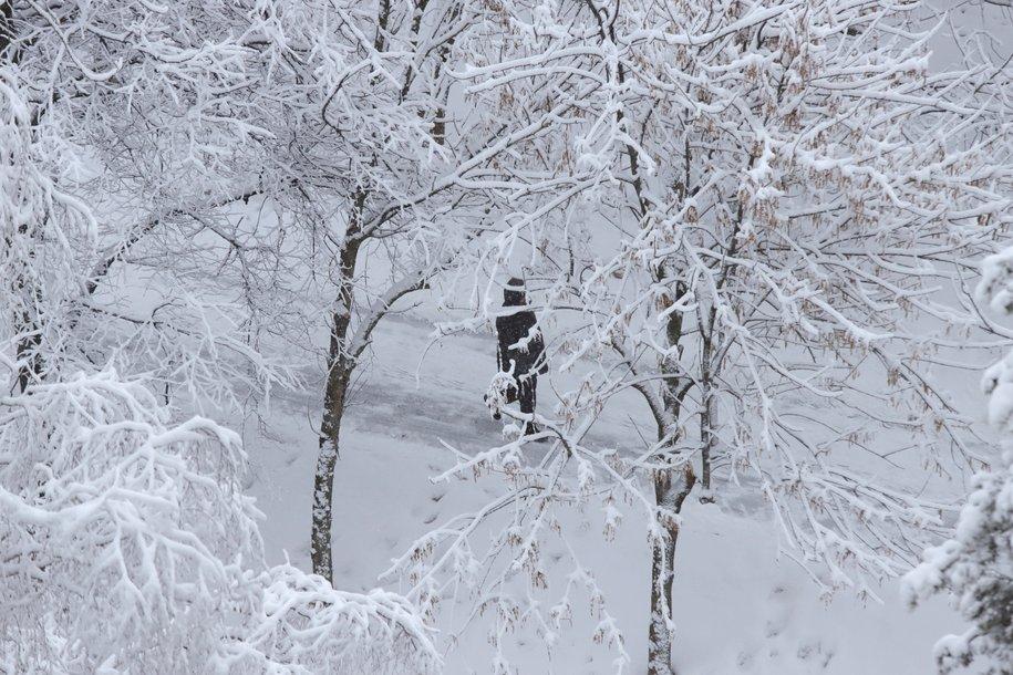 Метель и до 4 градусов мороза ожидается сегодня в Москве