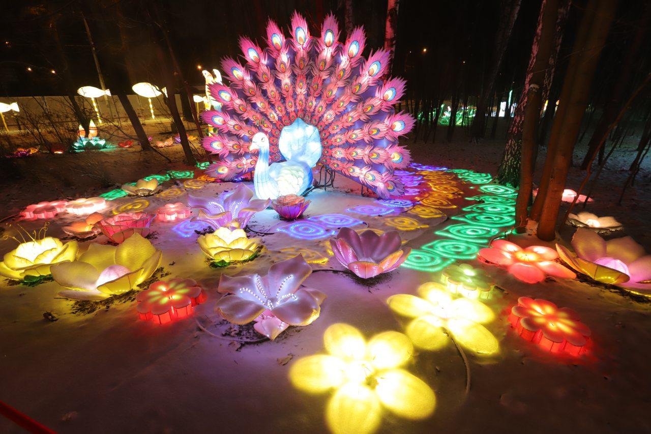 Фестиваль волшебных китайских фонарей стартовал в парке «Сокольники»