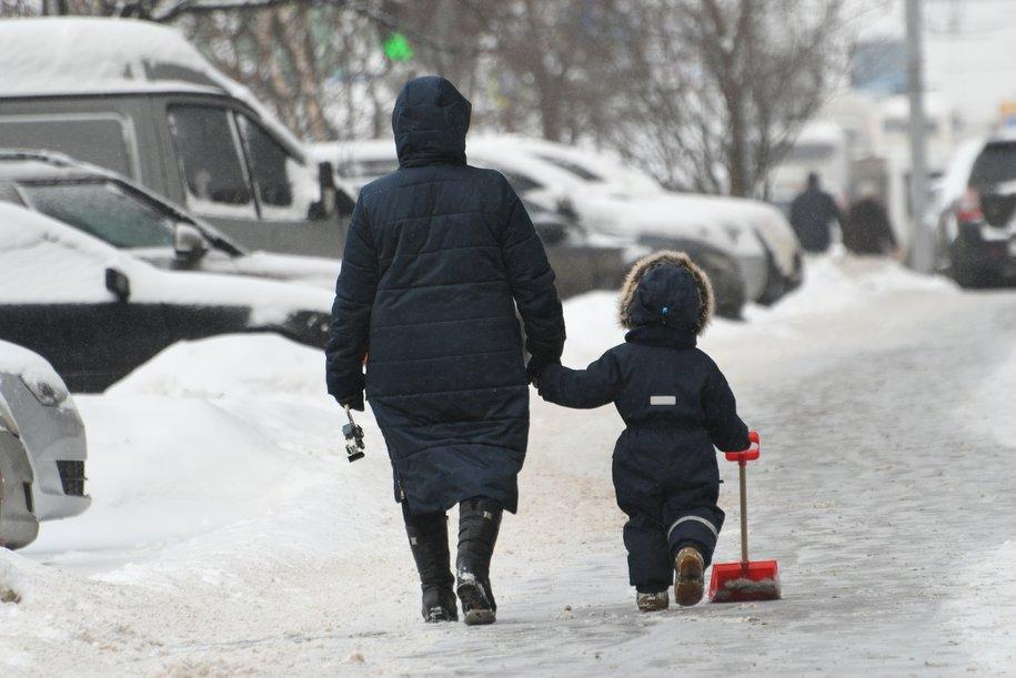Влажная и ветреная погода сохранится в Москве в начале следующей недели