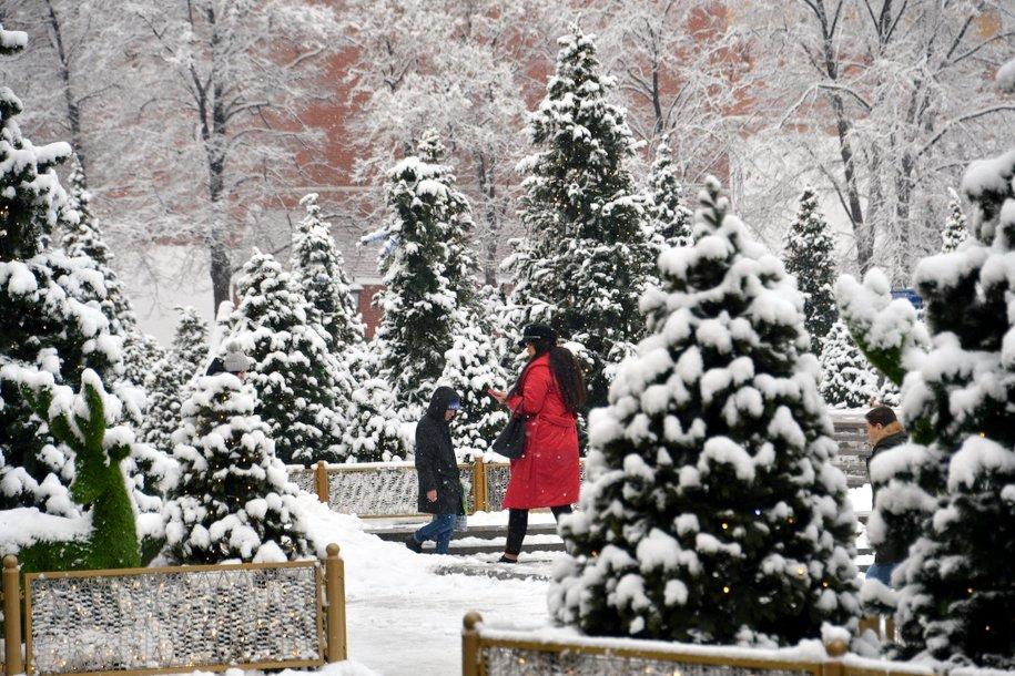 В столичных парках проведут новогодние экскурсии от Мосприроды