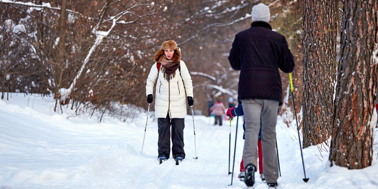 В СВАО оборудуют лыжные трассы и обустроят пункты проката лыж