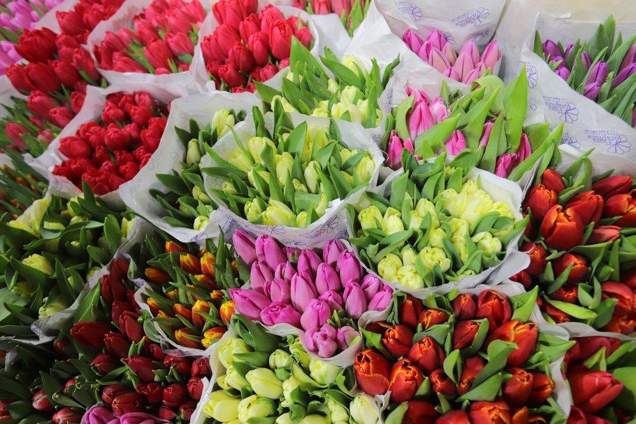 Москву к 8 марта украсят 400 праздничных плакатов с цветами и видео на медиафасадах