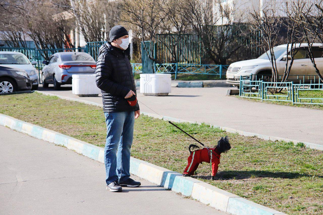 Сегодня в Москве ожидается пасмурная погода и небольшие осадки