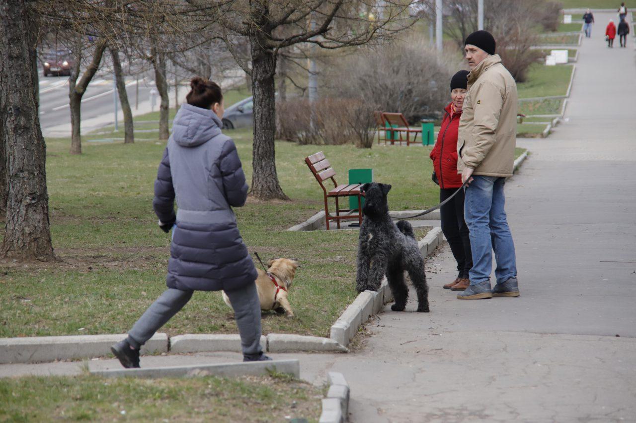 За прошедшие сутки от коронавируса в Москве вылечились 480 человек