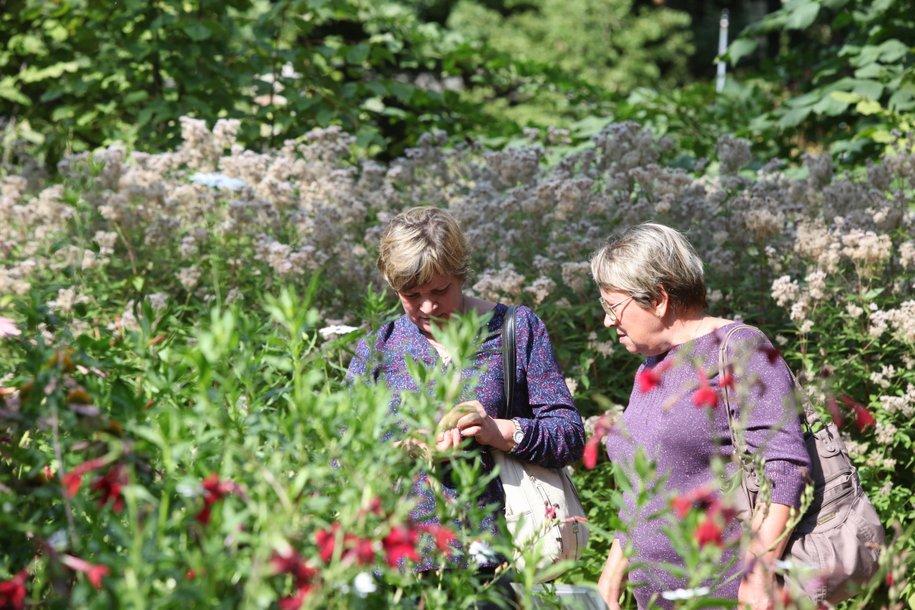 «Аптекарский огород» откроют для посетителей с 1 июня