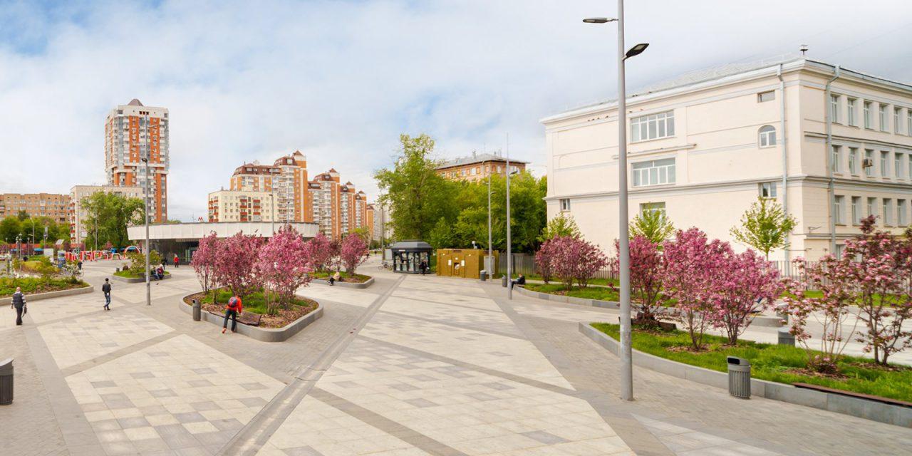 В Москве зацвели более 500 декоративных яблонь
