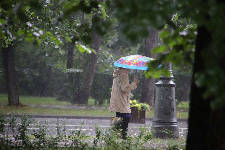 Май в Москве может стать самым дождливым за 200 лет — Фобос