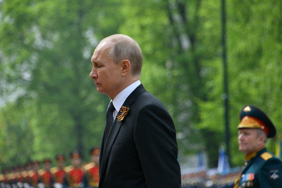 Владимир Путин поддержал идею высадить 27 миллионов деревьев в память о павших воинах