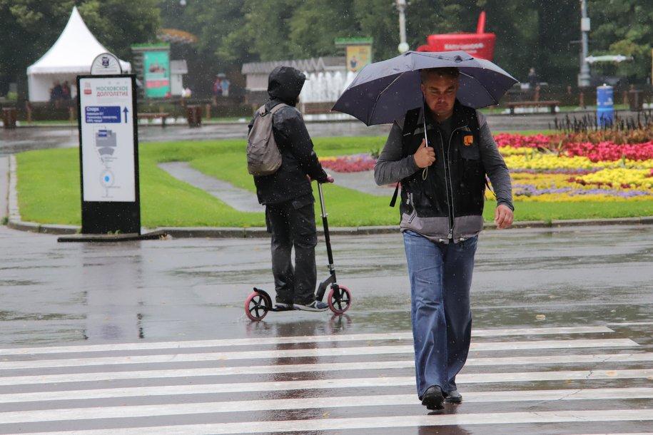 Дожди и 20-градусное тепло ожидают москвичей на предстоящей неделе