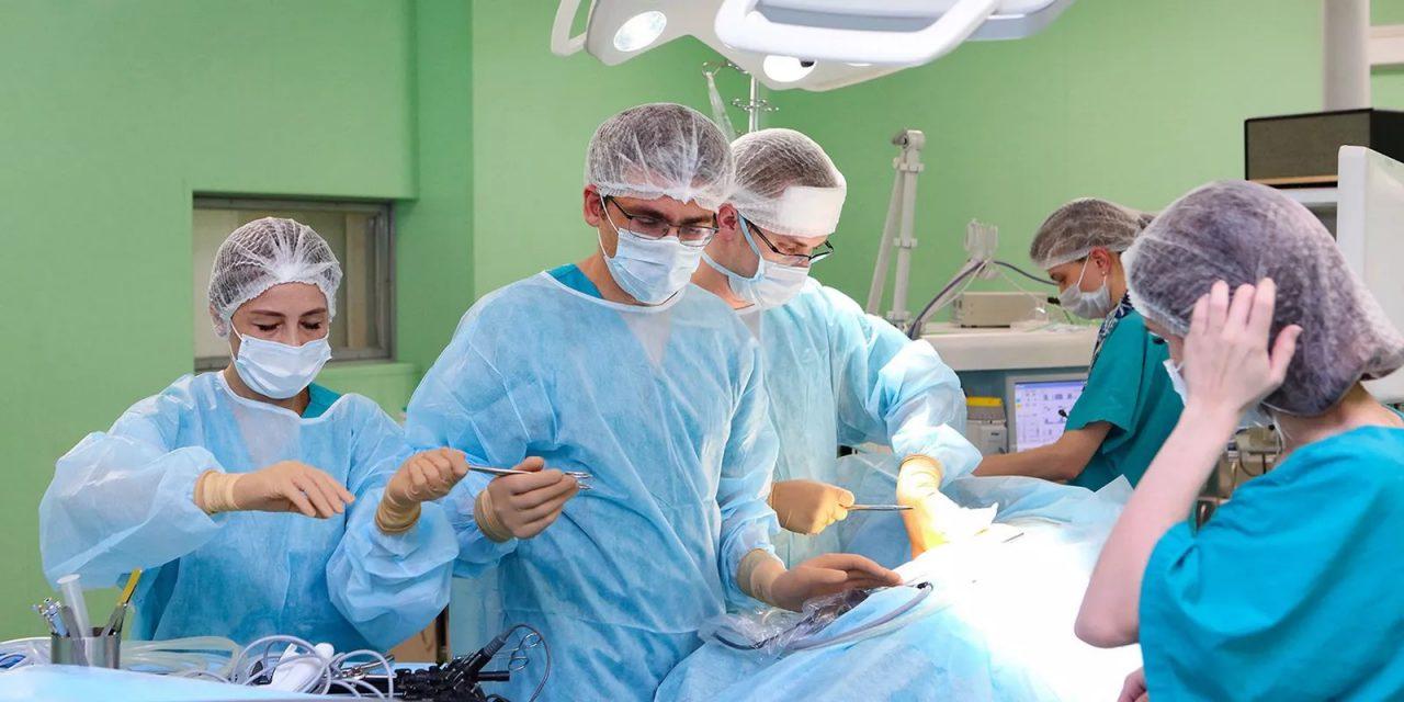 Почти 400 операций по пересадке органов и тканей провели врачи Боткинской больницы