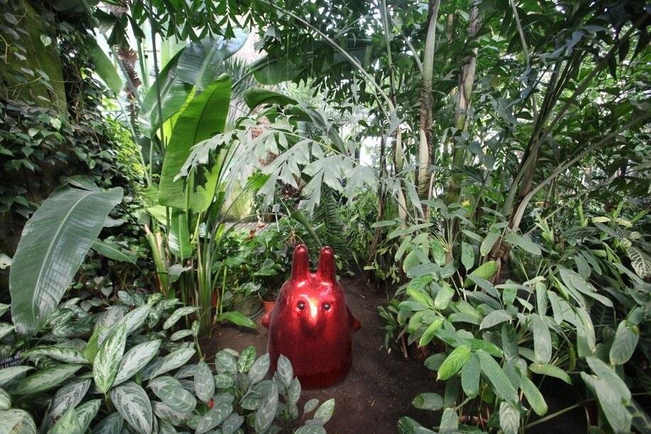 Сад дождя откроется 22 сентября в «Аптекарском огороде»