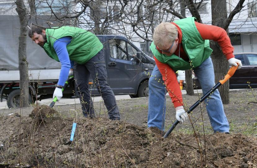 Городские службы приступили к проведению дезинфекции открытых пространств