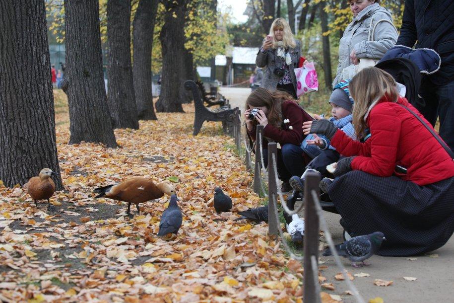 Холодный осенний день ожидает сегодня москвичей