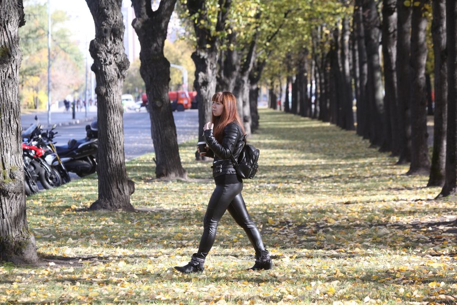 Без осадков и до плюс 10 градусов ожидается в Московском регионе в субботу